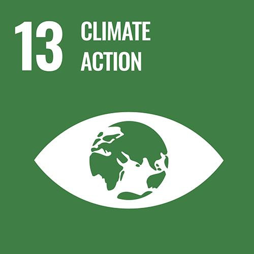 UN Sustainable Development Goals icon for Climate Action