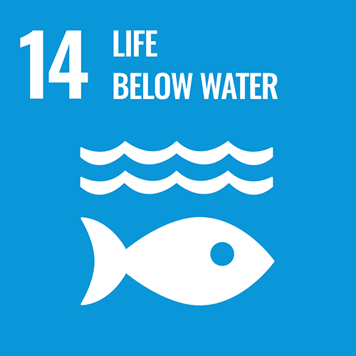 UN Sustainable Development Goals icon for Life below water