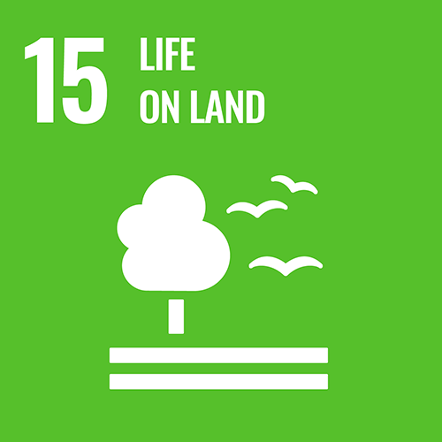 UN Sustainable Development Goals icon for Life of Land